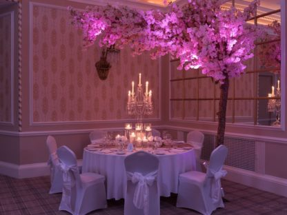 Cherry Blossom Tree Venue Styling