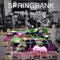 Springbank Flowers Manchester